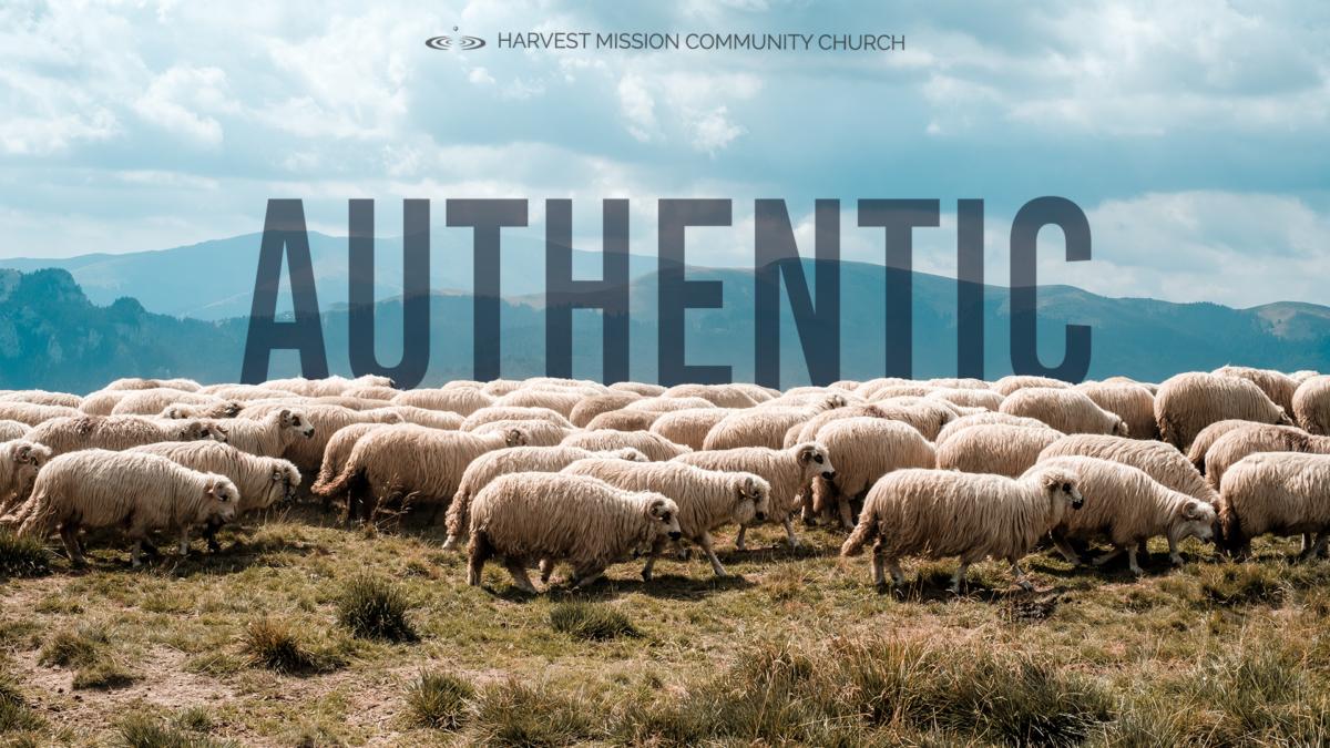 Authentic: Identity